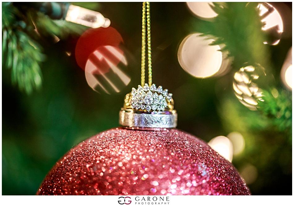 Katie_Dan_Winter_Wedding_Zorvino_Vineyard_Snowy_Wedding_NH_Wedding_Photographer_Garone_Photography_0030.jpg